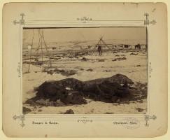 Wounded Knee II
