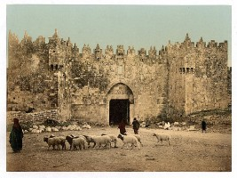 Jerusalem - Damaskustor